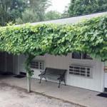 Bitter End Motel at Historic Nelsen's Hall