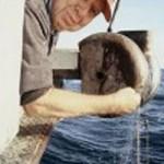 Jake Ellefson, Commercial Fisherman