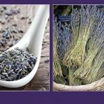 Fragrant Isle Lavender Farm, Shop & Le Café