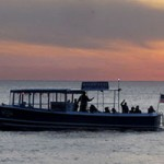 Shoreline Scenic Cruises